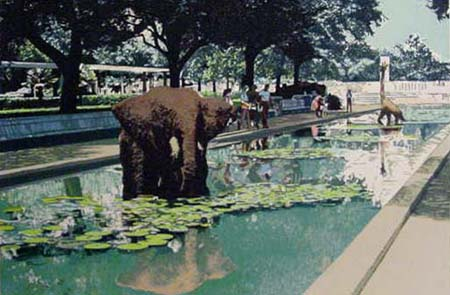 Elephant Pond by Fran Bull