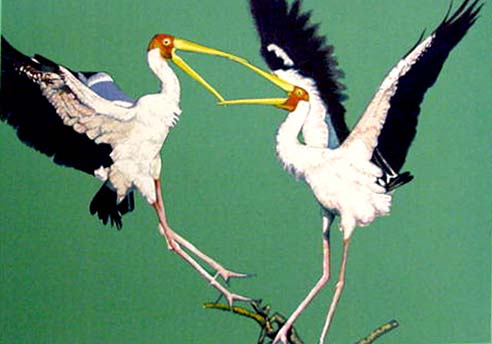 Two Storks by Fran Bull