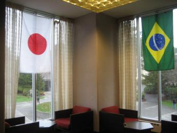 Japan and Brazil flags in Fishbowl